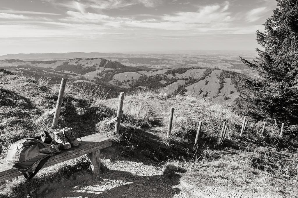 Leica M Monochrom • Zeiss ZM 25/2.8